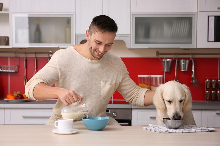 feed your pet with the nutritious home-made food items
